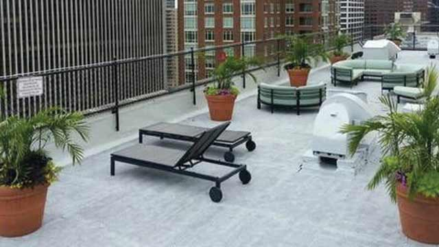 Rooftop lounge showing potted plants and lounge chairs