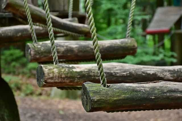 Swing Through the Trees of Fairmount Park With Treetop Quest Philly